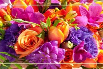 kwiaciarnia lenczowski bukiet